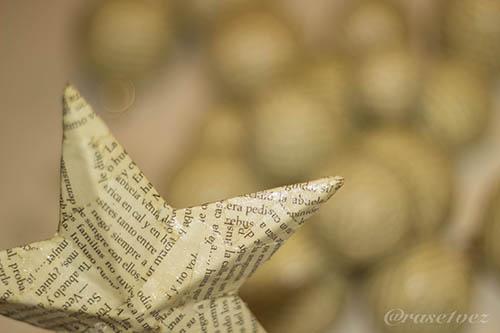 estrella literaria