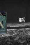 Campaña que promueve la lectura, con el libro de Julio Verne