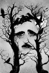 Ilusión óptica de Edgar Allan Poe realizada por Carlo Giambarresi