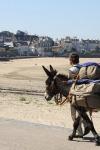 Marc Roger y su burro Babel recorren los caminos