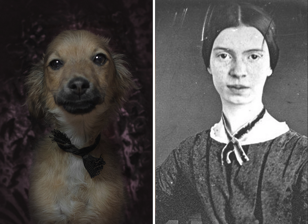 Emiliy Dickinson y su doble canino