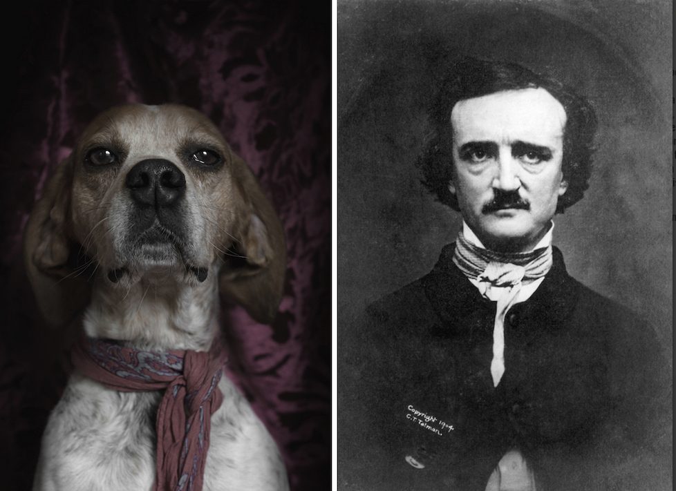 Edgar Allan Poe y su idéntico canino