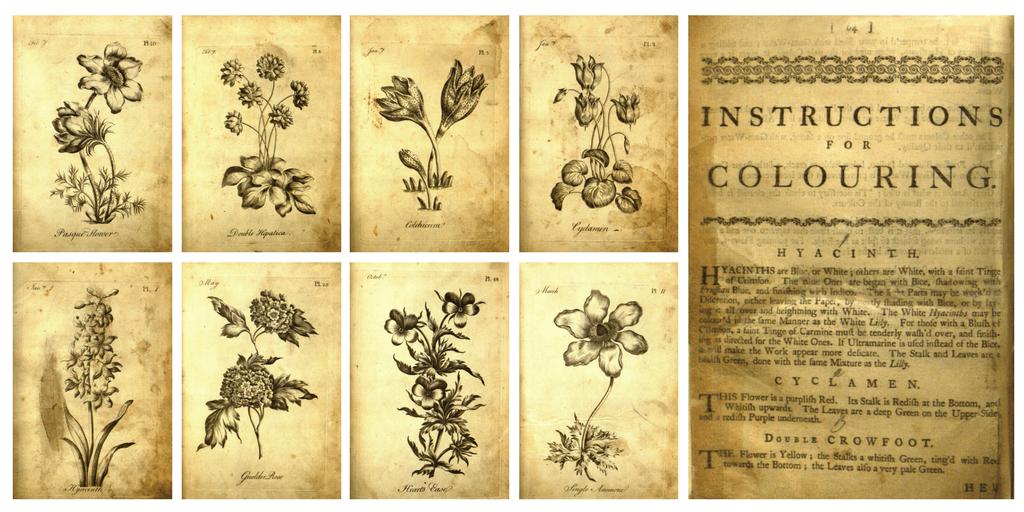 Láminas e instrucciones del primer libro de colorear para adultos
